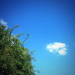 sky france summer nature