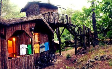 bike travel nature olympos bungalow t-shirt