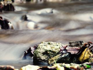 water macro nature photostory photography