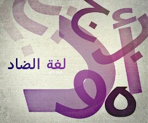 photostory quotes & sayings arabic design designs
