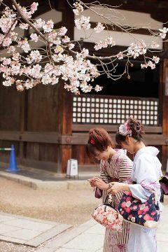 japan kawaii cute kimono cherry blossom