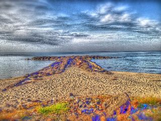 color splash summer beach nature vintage