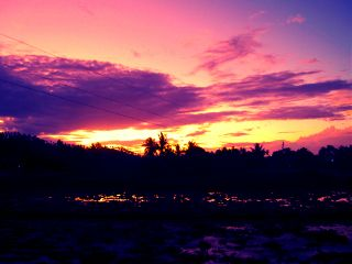 photography nature ricefield sunset