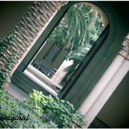 seminario photography vintage nature