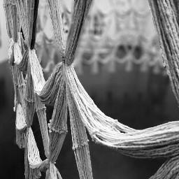 photography black & white art hdr