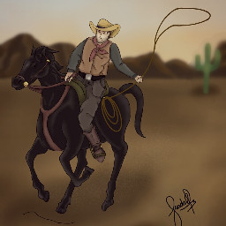 dccowboy